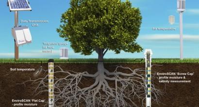 Probeเครื่องตรวจความชื้นในดิน